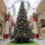 早くもクリスマスツリー