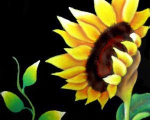 ひまわり:2010年 銀座伊東屋展示会出展作品 テーマは「夏色×チョークアート」。 ひまわりで型取ったハートの中に、大きなピンクのハートが。 水滴で「SUMMER」という文字を表しました。