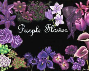 Purple flower:紫の花を集めました